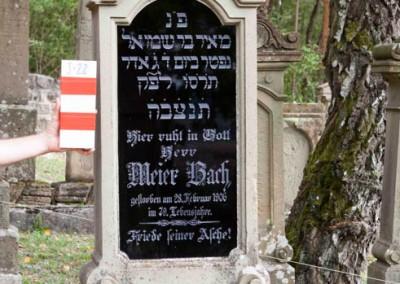 Bach Meier | J-22